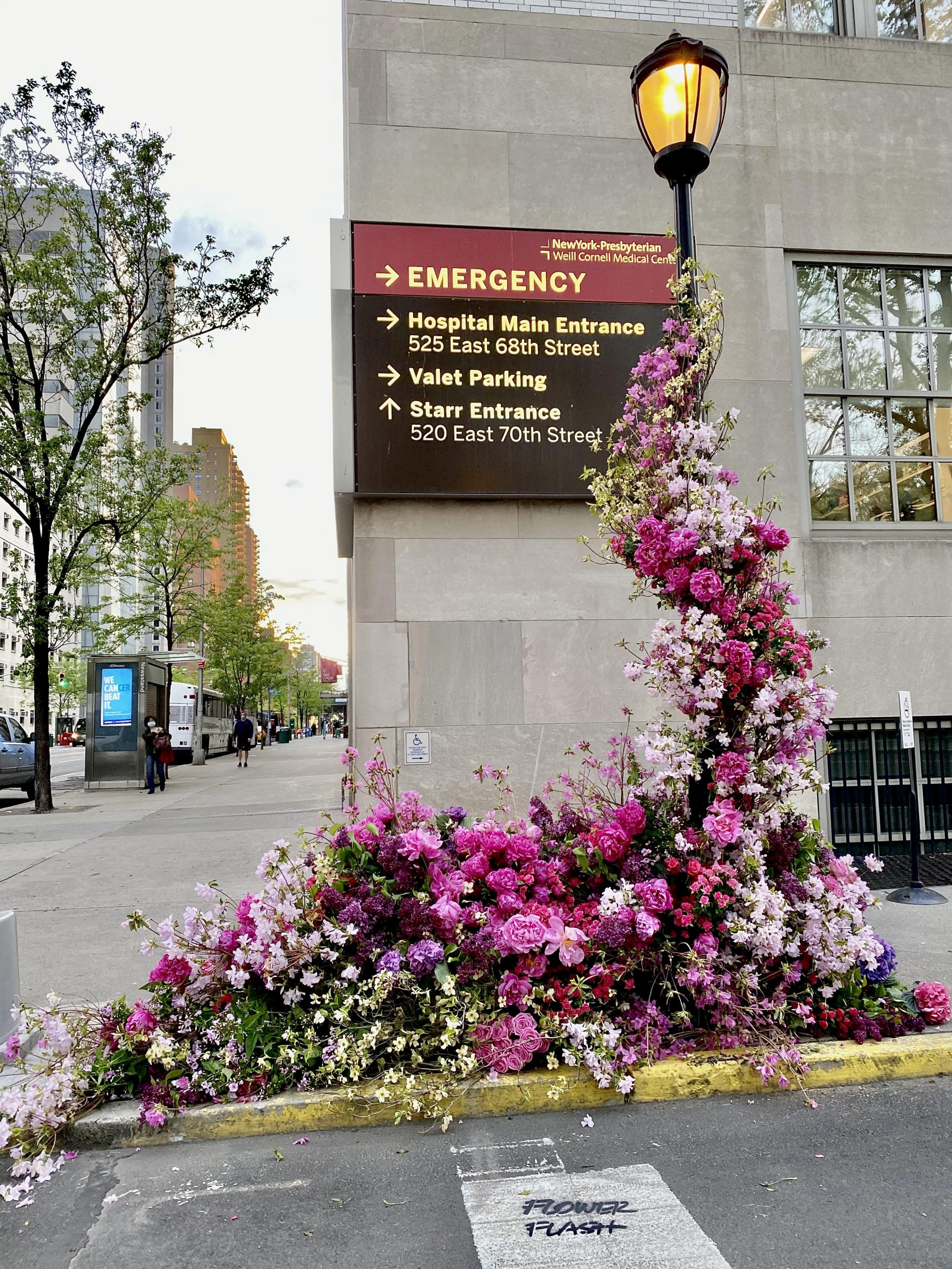 A Flower Guerilla in New York City