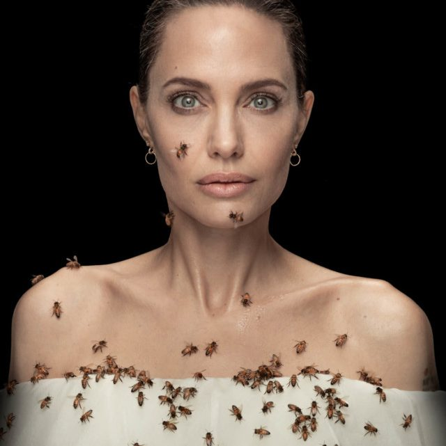 Angelina Jolie Covered in Bees to Encourage Conservation